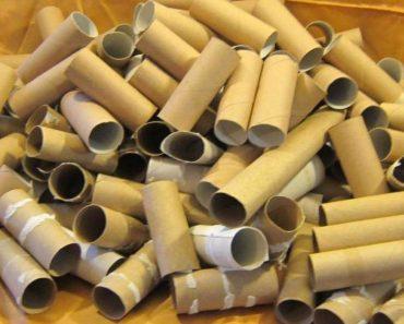 Deja de tirar rollos de papel higiénico. Aquí tienes 11 maneras de reutilizarlos en la casa