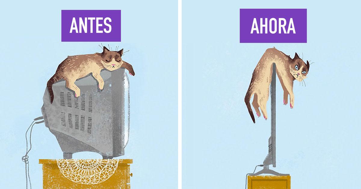 14 imágenes que descubren cómo la tecnología ha cambiado la vida de nuestras mascotas
