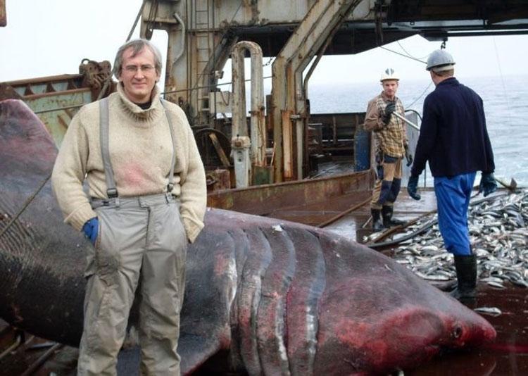 Estos pescadores encontraron algo inesperado (y muy grande) en su red de pesca