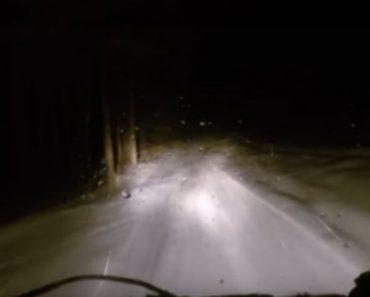 Estaban conduciendo por una oscura carretera nevada cuando esta misteriosa criatura cruzó su camino