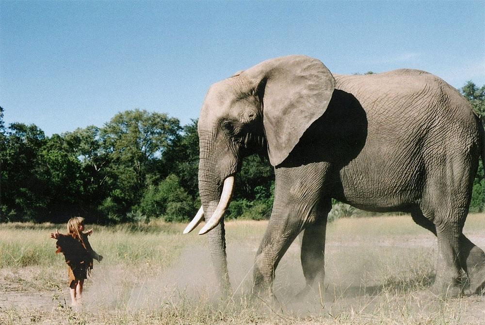 El Mowgli REAL de 'el libro de la selva' vivía en la selva de África y sus fotos son imposibles
