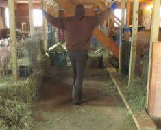 Este agricultor cree que está solo y empieza a bailar - lo que la cámara graba es impresionante