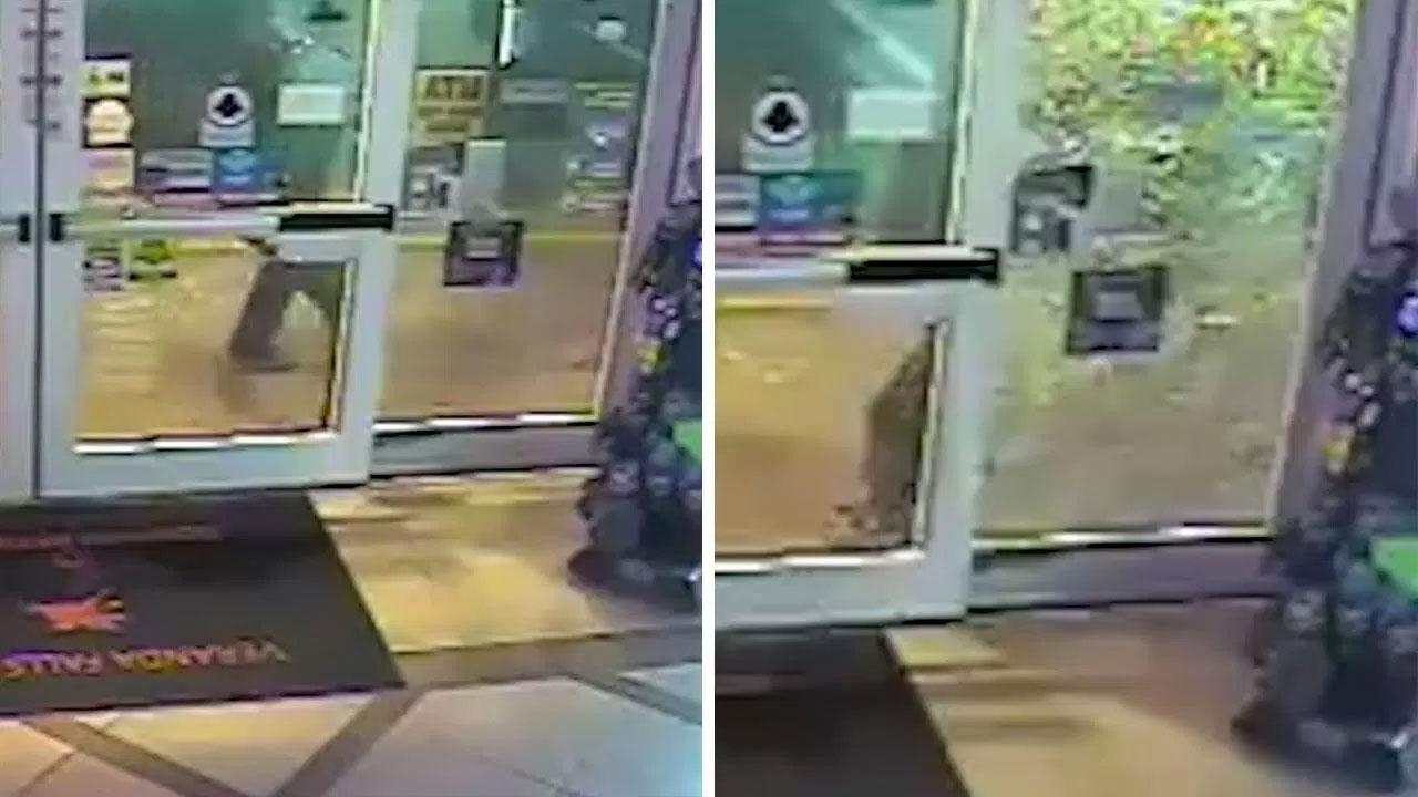Esto es lo que pasa cuando dos ladrones tratan de romper una puerta con un cristal RESISTENTE