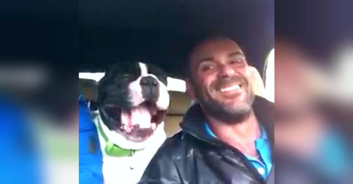 El hombre está cantando en el coche, entonces el perro le roba el espectáculo con su hermosa voz