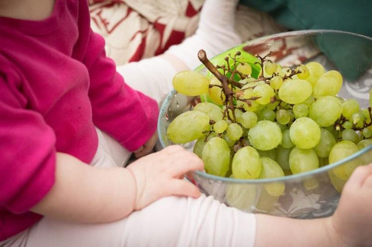 Esta aterradora radiografía revela por qué los niños nunca deben comer uvas sin supervisión