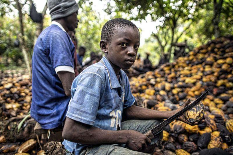 Estas 7 empresas colaboran con la esclavitud infantil. ¡EVÍTALAS!
