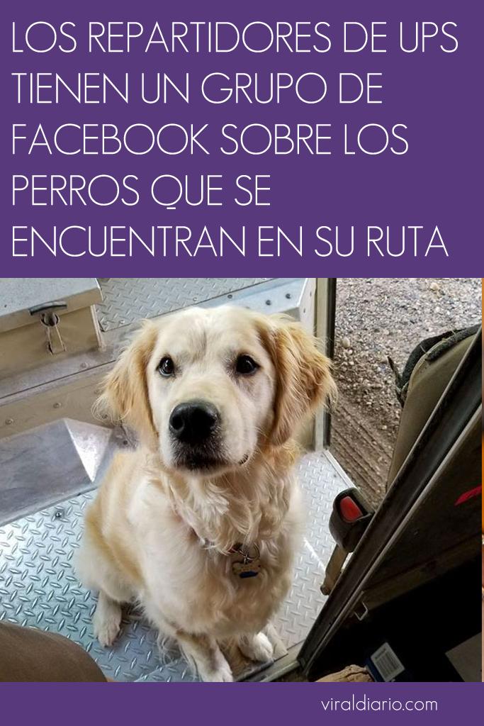 Los repartidores de UPS tienen un grupo de facebook sobre los perros que se encuentran en su ruta